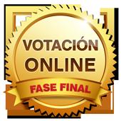Votación online - Fase Final
