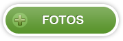 Click para acceder al álbum de fotos de FacoElche