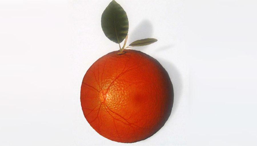 comer naranjas baja el riesgo de degeneración macular