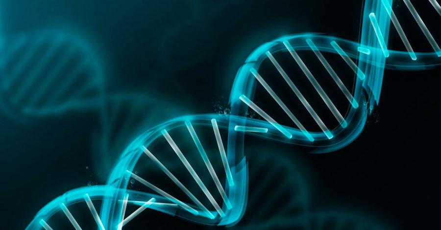De cómo la Oftalmología ha contribido a la Medicina y la Genética ...