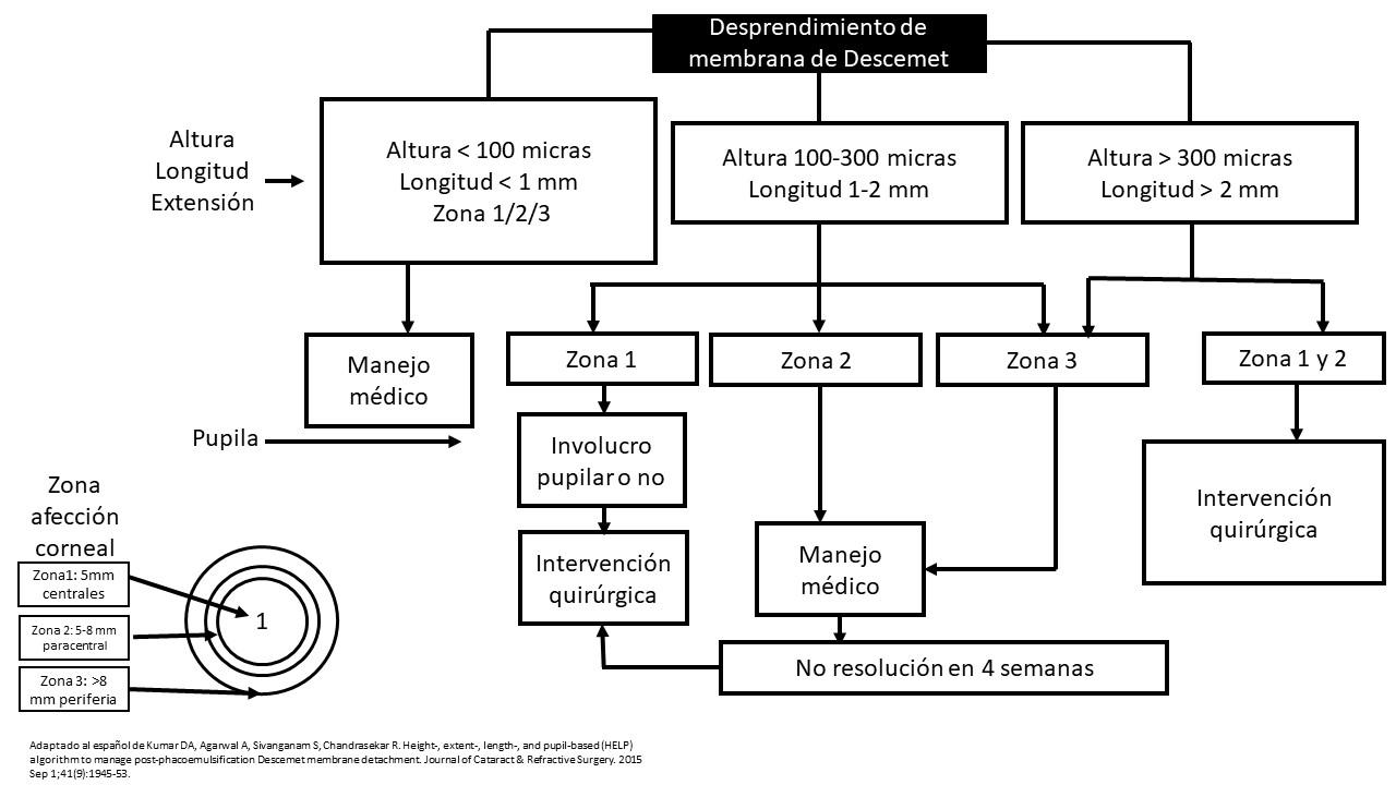 Figura 4. Algoritmo HELP de Kumar et al [2] adaptado al español.