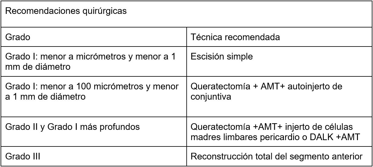 Tabla 3. Recomendaciones quirúrgicas (18)